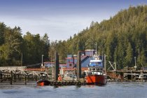Barcos en el puerto, de Tofino - foto de stock
