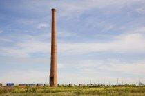 Tour de briques sur champ d'herbe verte pendant la journée — Photo de stock