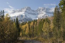 Cascade Mountain, Banff Park — Stock Photo