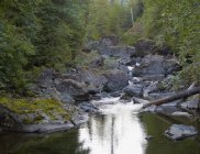 Elk Falls, British Columbia, Canada — Stock Photo