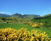Comeragh Mountains, County Waterford — Stock Photo