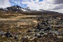 View of field and snow peaks on background, Snaefellsjoekull National Park, Snaefellsnes Peninsula; Iceland — Stock Photo