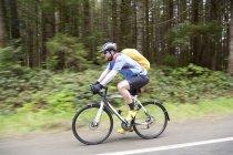 Вид сбоку на катание на велосипеде через национальный парк Pacific Rim; Ванкувер, Британская Колумбия, Канада — стоковое фото
