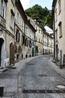 Un vicolo di ciottoli corre tra edifici residenziali; Slovenia — Foto stock