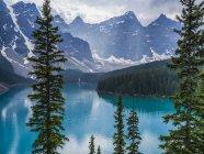 Acque cristalline del Lago di montagna e gli alberi sulla riva con picchi di neve su priorità bassa durante il giorno — Foto stock