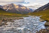 Petite rivière en passant par le champ avec l'herbe verte et des montagnes à distance — Photo de stock