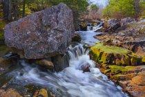 Вода спускается над камнями и камнями в лесу с деревьями на берегу — стоковое фото