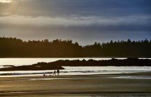 Silhouette Of A Couple And Their Bikes On Mackenzie Beach At Sunset; Tofino, British Columbia, Canada — Stock Photo