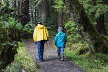 Пару старший ходьба на Золотий стежки ялина в старовікових лісів; Порт Клемент, місті Haida Ґваї, Британська Колумбія, Канада — стокове фото