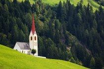 Высокая церковь шпиль на травянистом альпийском склоне с деревьями склона в фоновом режиме; Parggenhof, Больцано, Италия — стоковое фото
