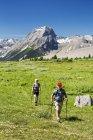 Um homem e uma mulher caminhando ao longo de uma trilha de prado alpino com montanhas e céu azul no fundo; Kananaskis Country, Alberta, Canadá — Fotografia de Stock