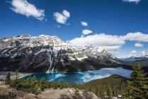 Озеро Пейто с некоторыми льда на бирюзовые воды в канадских Скалистых горах вблизи Банф; Альберта, Канада — стоковое фото