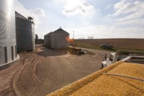 Grain truck loaded with corn at grain dryer and bin complex during corn harvest, near Nerstrand; Minnesota, United States of America — Stock Photo