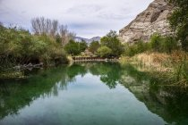 A pond in Whitewater Preserve; Whitewater, California, United States of America — Stock Photo