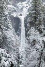 Yosemite Falls with snow in winter, Yosemite Valley, Yosemite National Park; California, United States of America — Stock Photo