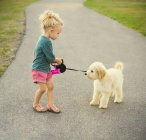 Little girl walking with labradoodle in park — Stock Photo