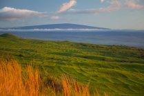 Alpages Kohala, vieilles terrasses hawaïennes, Mauna Loa au loin, Île de Hawaï, Hawaï, États-Unis d'Amérique — Photo de stock