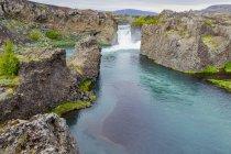 Amplia vista angular de la hermosa parada turística en Hjalparfoss, Islandia, donde un par de cascadas y agua azul cristalina fluyen entre campos de flores de altramuz, Islandia - foto de stock