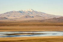 A late afternoon brings out the colours of a laguna in a south-american desert with a snow-capped mountain peak on the horizon, Malargue, Mendoza, Argentina — Stock Photo