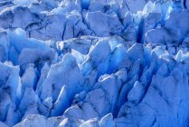 Il ghiaccio glaciale blu è esposto nei crepacci sul ghiacciaio Hole in the Wall, Juneau Icefield, Tongass National Forest; Alaska, Stati Uniti d'America — Foto stock