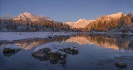 Зимовий захід на березі річки Менденхолл (національний ліс Тонгасс); Джуно (Аляска, США). — стокове фото