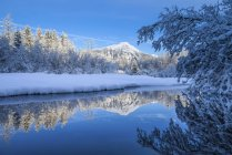 Une couverture de neige fraîche recouvre le paysage de la forêt nationale de Tongass; Juneau, Alaska, États-Unis d'Amérique — Photo de stock