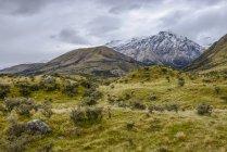 Montagnes enneigées vues de Mount Cook Road; South Island, Nouvelle-Zélande — Photo de stock