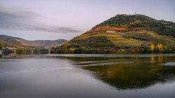 Rivière Douro avec vignobles sur les collines colorées, vallée du Douro ; Pinhao, district de Viseu, Portugal — Photo de stock