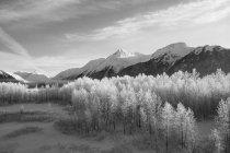 Зимова мальовнича вершина гір і долина на Аляски, долина Портаж у південно-центральній частині Аляски; Анкоридж, Аляска, США — стокове фото