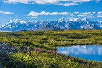 The Alaska Range as seen from the McLaren Ridge Trail off the Alaska Highway on a sunny summer day in South-central Alaska; Alaska, United States of America — Stock Photo