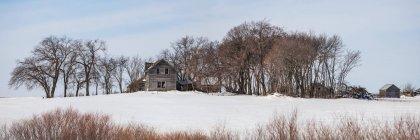 Dilapidated farm house in winter, near Winnipeg; Manitoba, Canada — Stock Photo