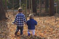 Vista posteriore di un ragazzo e la sua sorellina che cammina sulle foglie cadute — Foto stock
