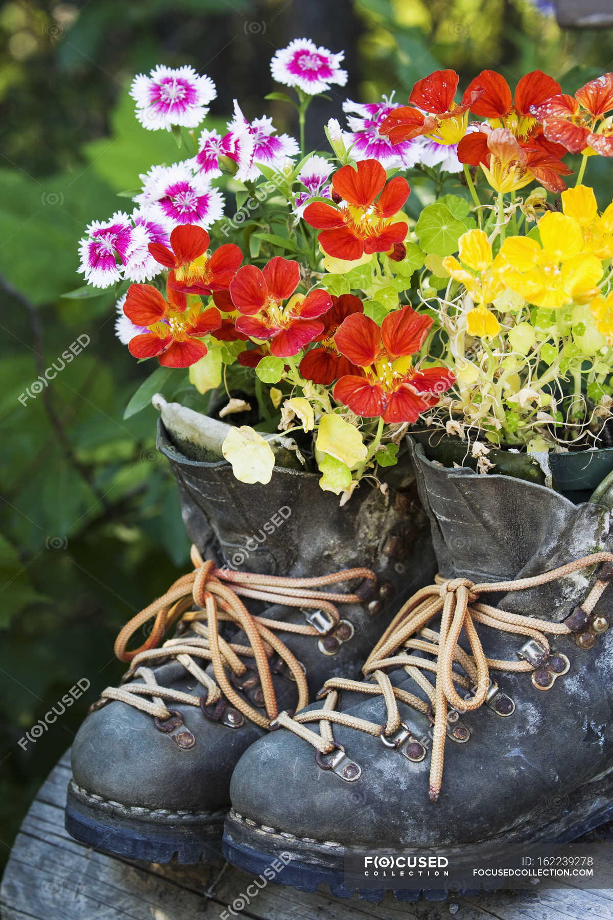 Flowers growing in boots — ornament