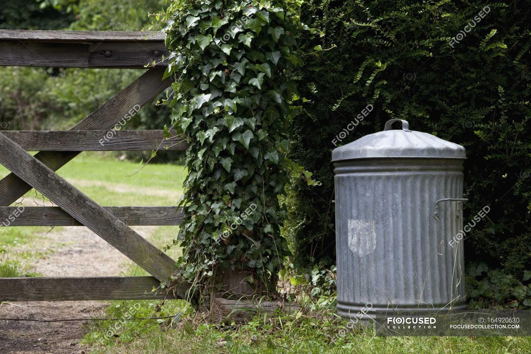 Old Metal Trash Can In Garden Summer