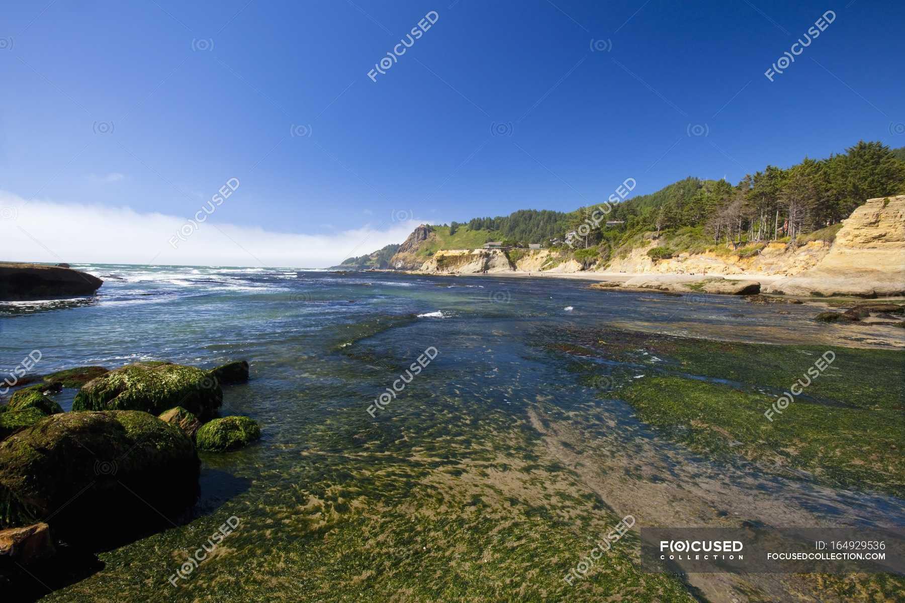 Otter Rock Beach Along The Oregon Coast