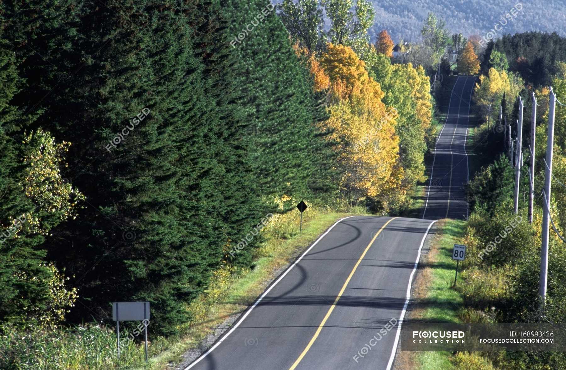 Hilly Road, Canada — the way forward, horizontal - Stock