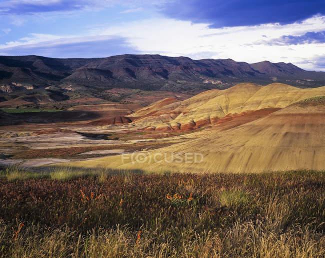 Красочные холмы — стоковое фото