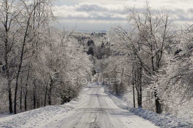 Route en hiver après la tempête de verglas — Photo de stock