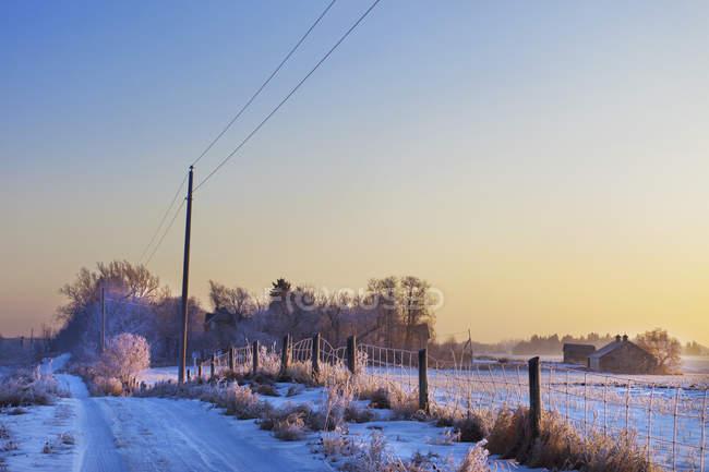 Снігу та морозів покриття — стокове фото