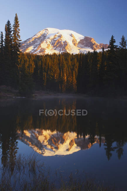 Mount Rainier Reflected In A Lake — Stock Photo