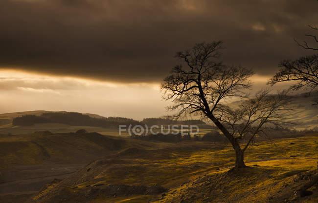 Nuages orageux sur un paysage vallonné — Photo de stock