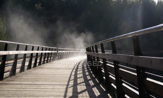 Das historische Kinsol-Bock im Nebel — Stockfoto