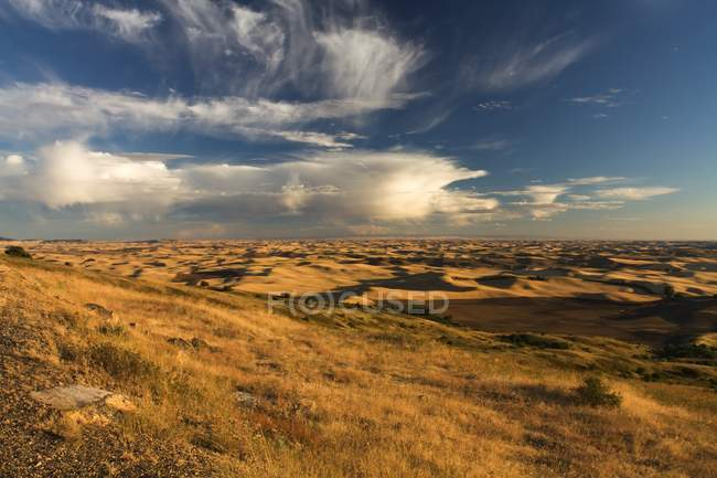 View of Steptoe Butte — Stock Photo
