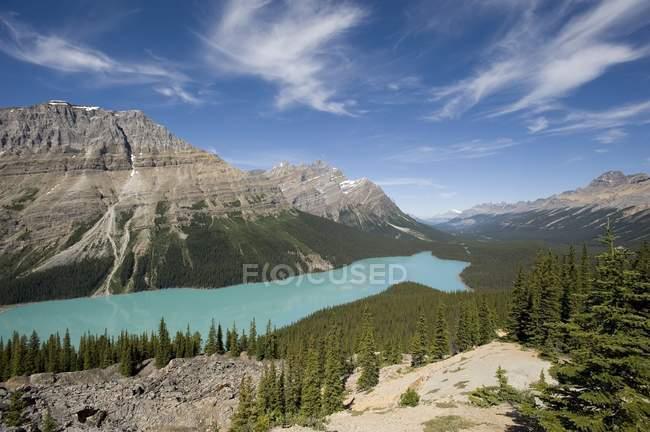 Гірське озеро і дерев — стокове фото