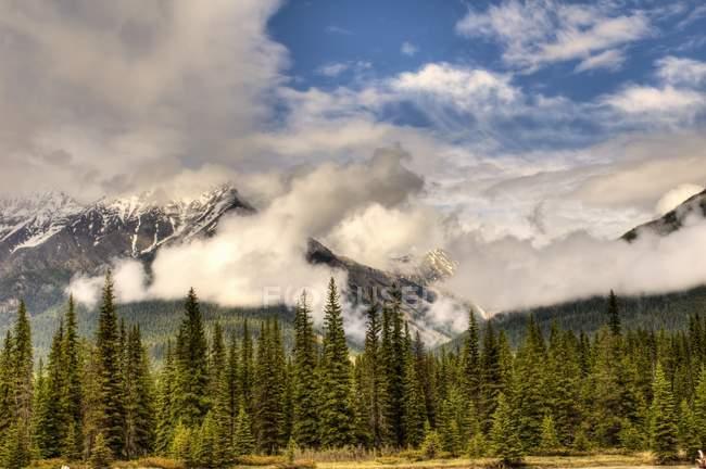 Parc National de Banff (Alberta) — Photo de stock