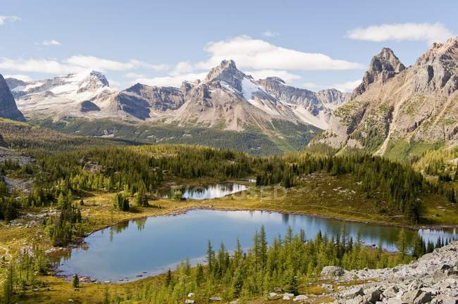 Opabin Plateau In Lake O'hara Region — Stock Photo