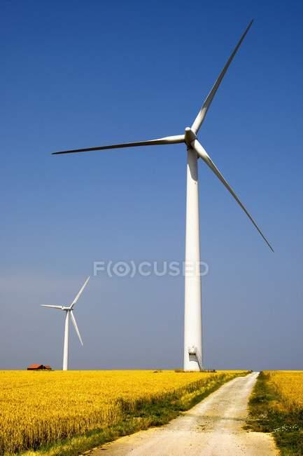 Turbinas eólicas em campo — Fotografia de Stock