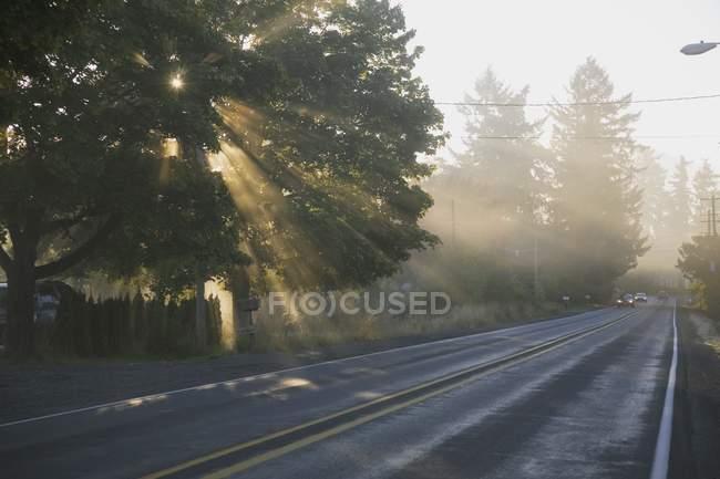 Sun rays On Road — Stock Photo