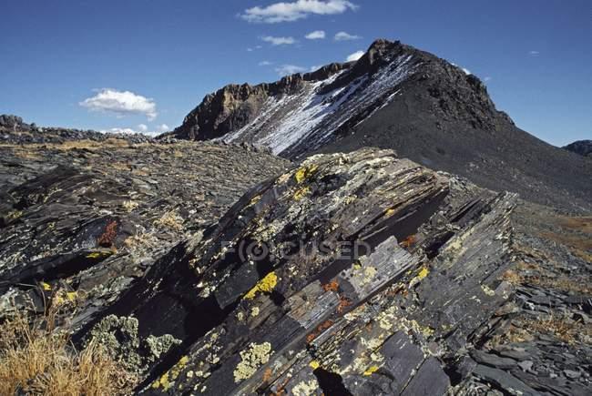 Sollevamento scisti con cluster di licheni — Foto stock