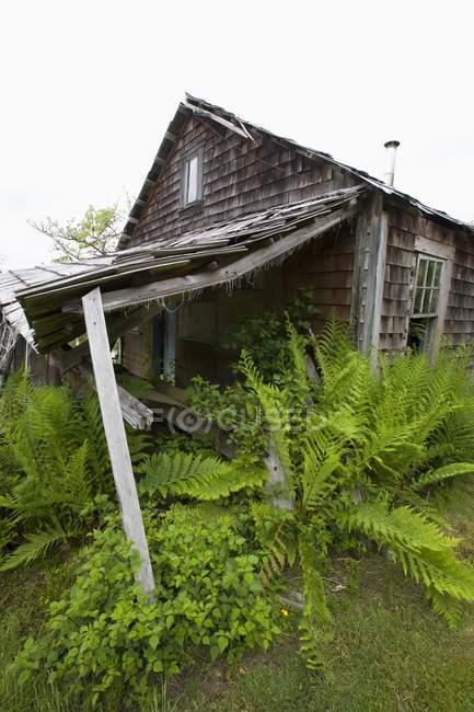 Vecchia casa in legno abbandonato — Foto stock